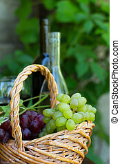 Bottles of red and white wine with grapes