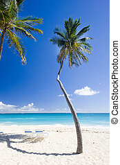 Bottom Bay, Barbados, Caribbean