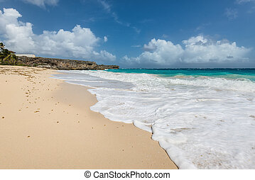 Bottom beach in Barbados island, Caribbean