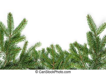 bottom border from fir twigs