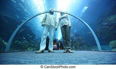 Bottom view on couple in oceanarium
