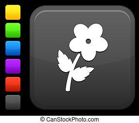 bottone, fiore, quadrato, icona, internet