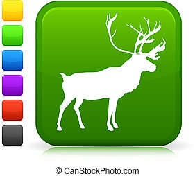 bottone, icona, cervo, internet