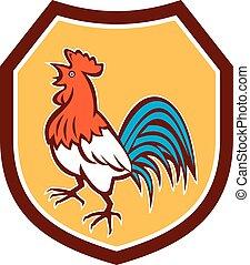 bouclier, chant, haut, coq, regarder, retro, poulet