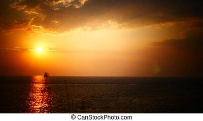 Bougainvillea and Orange Sunset above ocean Kerala - Orange...