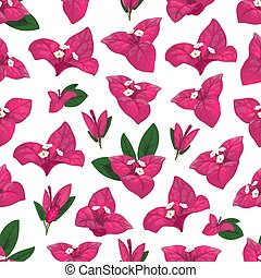 Bougainvillea seamless pattern of vector white flowers, pink and green leaves. Floral background of blooming bougainvillea branches and vines, blossoms of exotic tropical evergreen plant