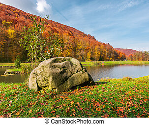lovely autumn scenery in park - boulder on the shore of a...