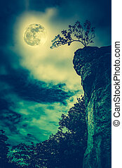 Boulders against sky with cloudy and beautiful full moon. Cross process.