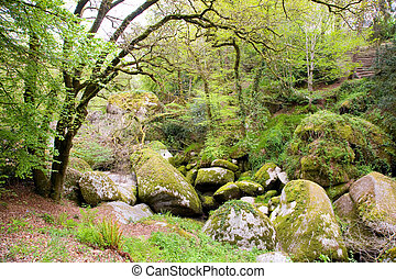 Boulders at Huelgoat in Brittany, France - Big rounded ...