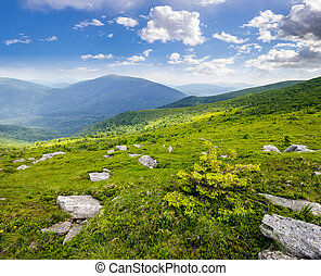 boulders on the hillside in high mountains - Massive...