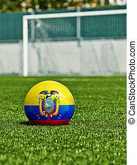 boule football, à, drapeau equateur, herbe, dans, stade