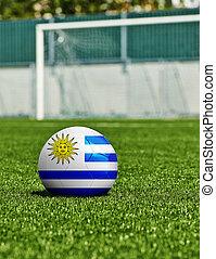 boule football, à, drapeau uruguay, herbe, dans, stade