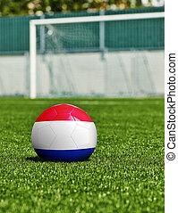 boule football, à, netherlands signalent, herbe, dans, stade