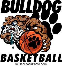 bouledogue, basket-ball