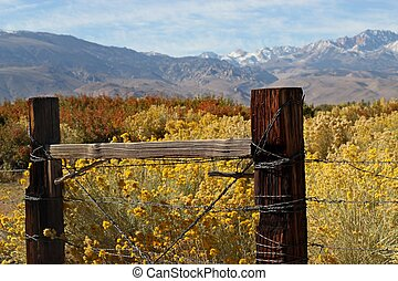 Boundaries of an Eastern Sierra Ranch - Rustic fence at the...