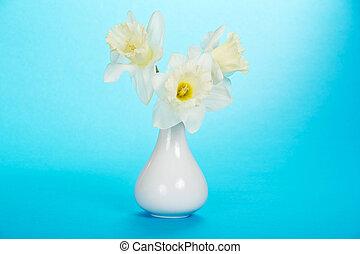 bouquet, blanc, doux, printemps, narcissuses