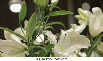 bouquet, blanc, lis