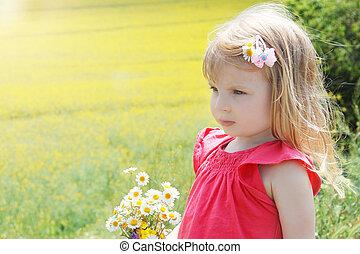 bouquet, camomile, champ, rapeseed, dorlotez fille