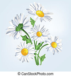 Bouquet camomile. Greeting card with flowers in pastel colors.