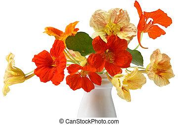 bouquet, capucine