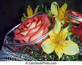 Bouquet colour on black background