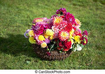 bouquet, dahlia, fleurs