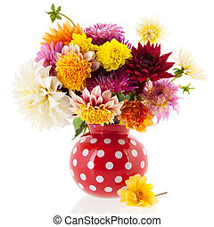 Bouquet Dahlias in red vase isolated over white background