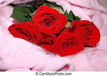 bouquet, de, roses rouges