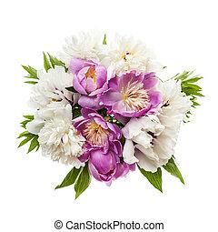 bouquet, fleur, isolé, pivoine