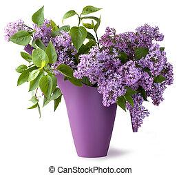 bouquet, fleur, lilas