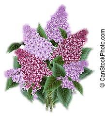 bouquet, fleurs, lilas