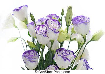 bouquet, fleurs, lisianthus