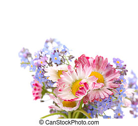 bouquet, fleurs, printemps