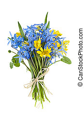 bouquet, fleurs ressort, frais