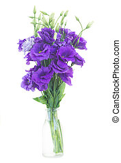 bouquet, fleurs, violet, eustoma