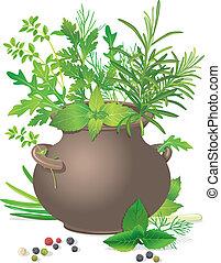 Bouquet fresh herbs in ceramic pot