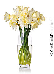 bouquet from white narcissus in vase isolated