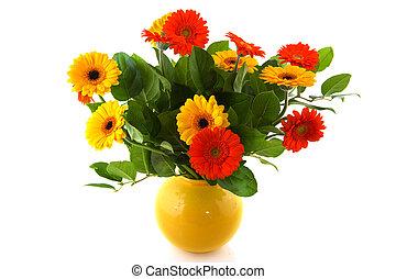bouquet, gerber