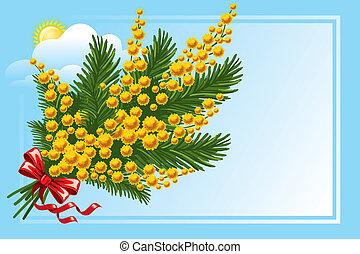 bouquet, mimosa, myosotis