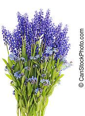 bouquet, mini, fleurs, bleu