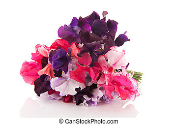 Bouquet mixed Lathyrus