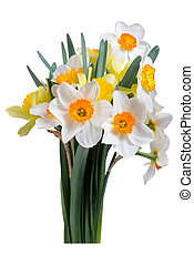 Bouquet narcissus with leaves