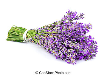 Bouquet of a fragrant lavender