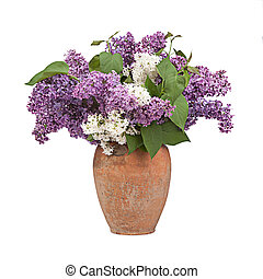 Bouquet of a lilac in ceramic vase on white