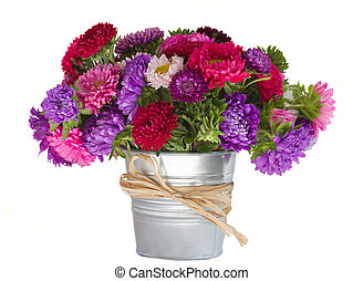 bouquet of aster flowers in vase isolated on white background
