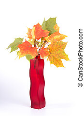 Bouquet of autumn leaves in bright colored vase on a white background
