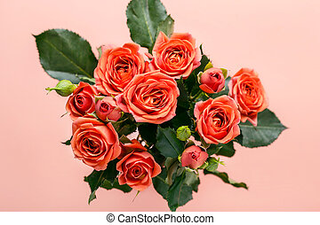 Bouquet of beautiful coral roses on a pink background