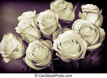 Bouquet of beautiful roses on a dark background.