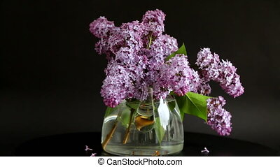 bouquet of beautiful spring lilac flowers on a black background