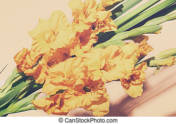 Bouquet of beautiful yellow gladiolus